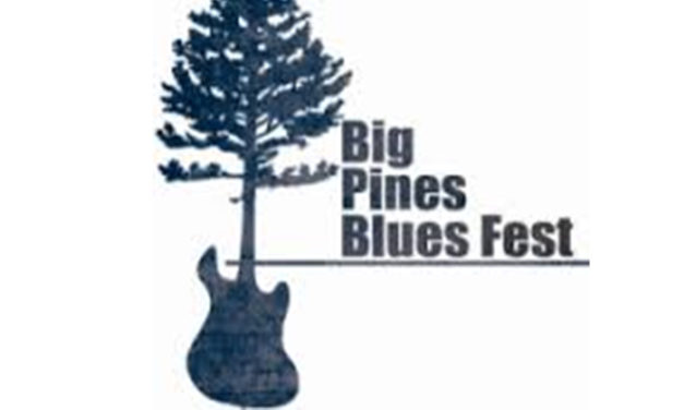 Blues Festival announces 2017 ticket availability, pricing