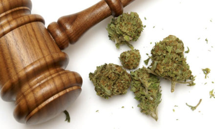 Law Enforcement Officials Express Support for Proposal to Reduce Marijuana Penalties in Texas