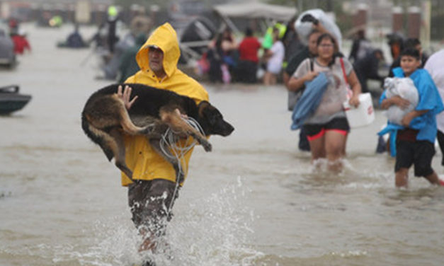 CBS 19 Launches Texas Cares Initiative to Raise Money for Hurricane Harvey Victims