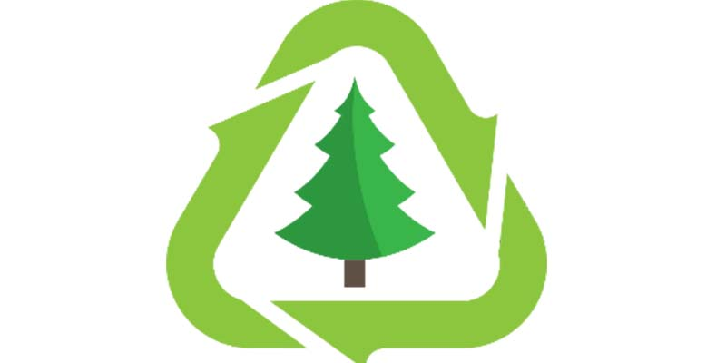 Christmas tree recycling starts Dec. 26