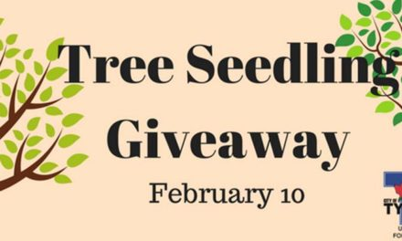 Hardwood tree seedling giveaway set for Feb. 10